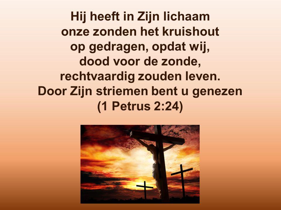 Hij heeft in Zijn lichaam onze zonden het kruishout op gedragen, opdat wij, dood voor de zonde, rechtvaardig zouden leven. Door Zijn striemen bent u g
