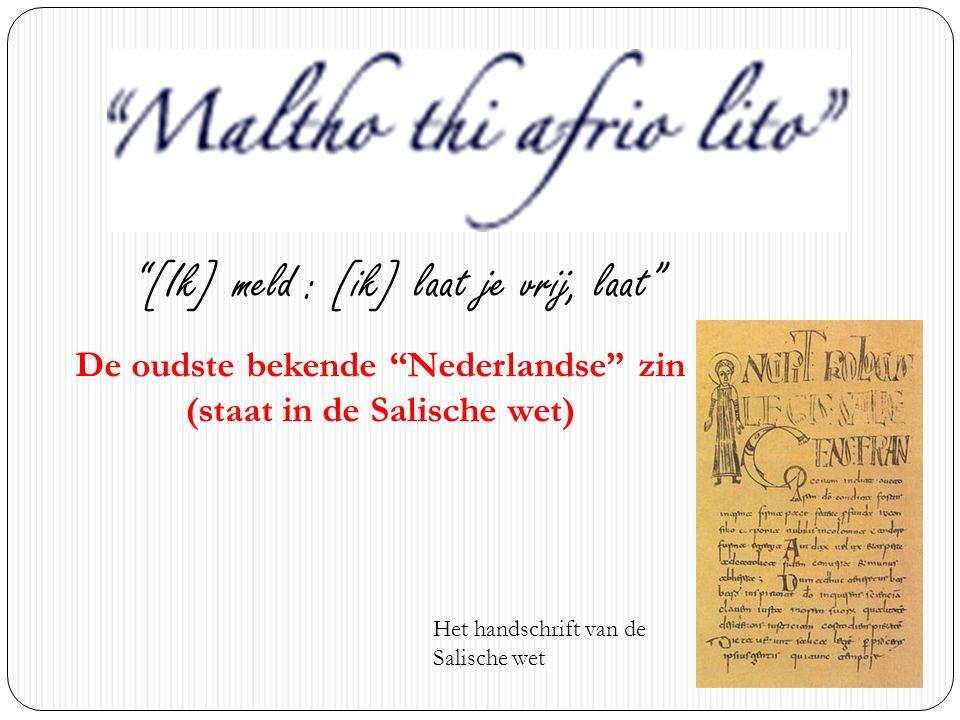 """Het handschrift van de Salische wet """"[Ik] meld : [ik] laat je vrij, laat"""" De oudste bekende """"Nederlandse"""" zin (staat in de Salische wet)"""