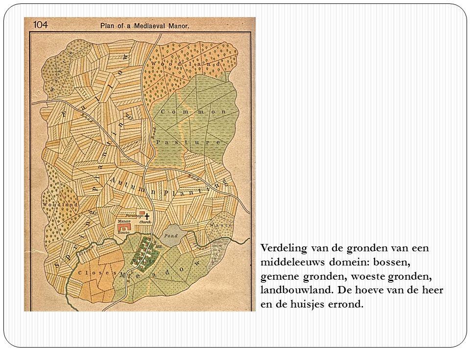 Verdeling van de gronden van een middeleeuws domein: bossen, gemene gronden, woeste gronden, landbouwland. De hoeve van de heer en de huisjes errond.