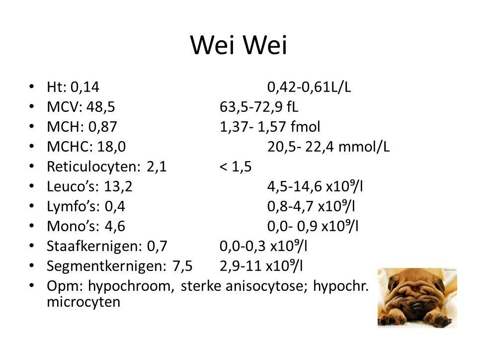 Wei Ht: 0,140,42-0,61L/L MCV: 48,563,5-72,9 fL MCH: 0,871,37- 1,57 fmol MCHC: 18,020,5- 22,4 mmol/L Reticulocyten: 2,1< 1,5 Leuco's: 13,24,5-14,6 x10⁹