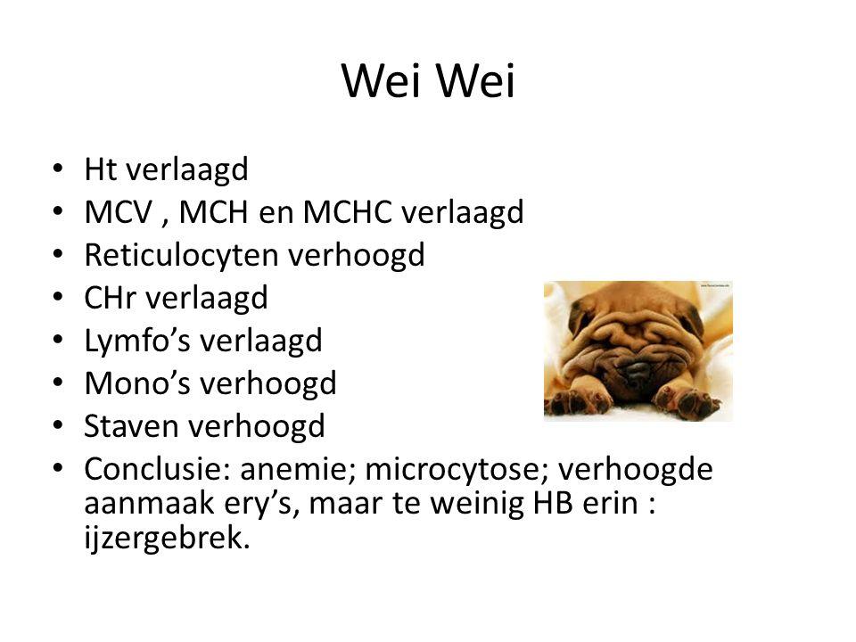 Wei Ht verlaagd MCV, MCH en MCHC verlaagd Reticulocyten verhoogd CHr verlaagd Lymfo's verlaagd Mono's verhoogd Staven verhoogd Conclusie: anemie; micr