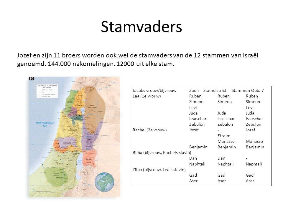 Stamvaders Jozef en zijn 11 broers worden ook wel de stamvaders van de 12 stammen van Israël genoemd. 144.000 nakomelingen. 12000 uit elke stam. Jacob