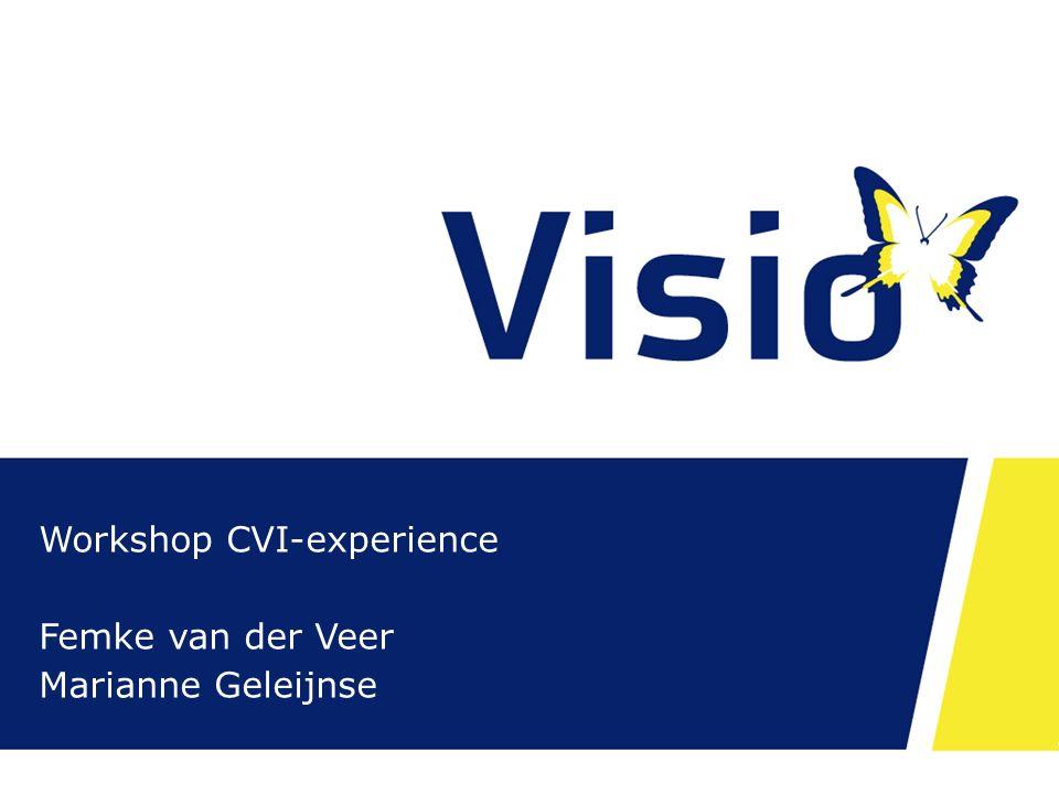 Workshop CVI-experience Femke van der Veer Marianne Geleijnse