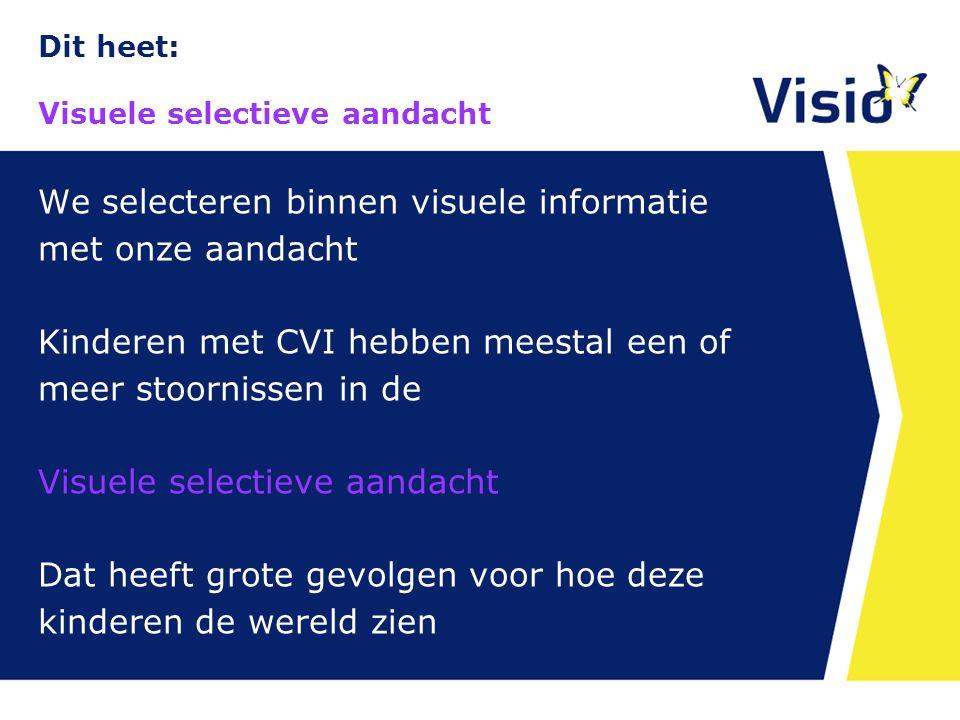 Dit heet: Visuele selectieve aandacht 10 december 2015 We selecteren binnen visuele informatie met onze aandacht Kinderen met CVI hebben meestal een o