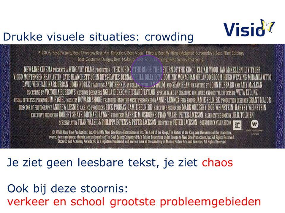 Je ziet geen leesbare tekst, je ziet chaos Ook bij deze stoornis: verkeer en school grootste probleemgebieden Drukke visuele situaties: crowding