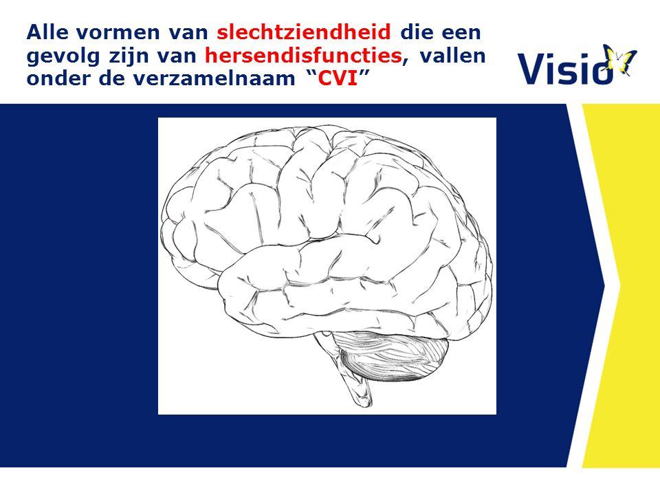 CVI kan omvatten, stoornissen in:  lage visuele functies:  hoge visuele functies  functies die voorwaardelijk zijn voor het zien: 10 december 2015