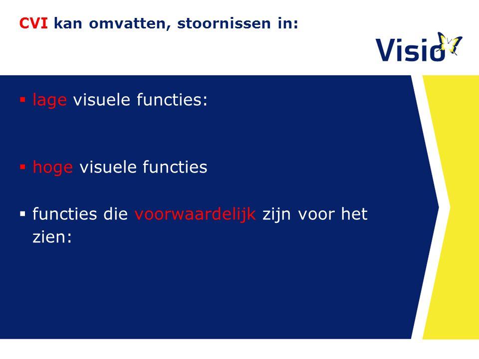 CVI kan omvatten, stoornissen in:  lage visuele functies: - Beeldkwaliteit - Oogbewegingen (oculomotoriek)  hoge visuele functies  functies die voorwaardelijk zijn voor het zien: - o.a.