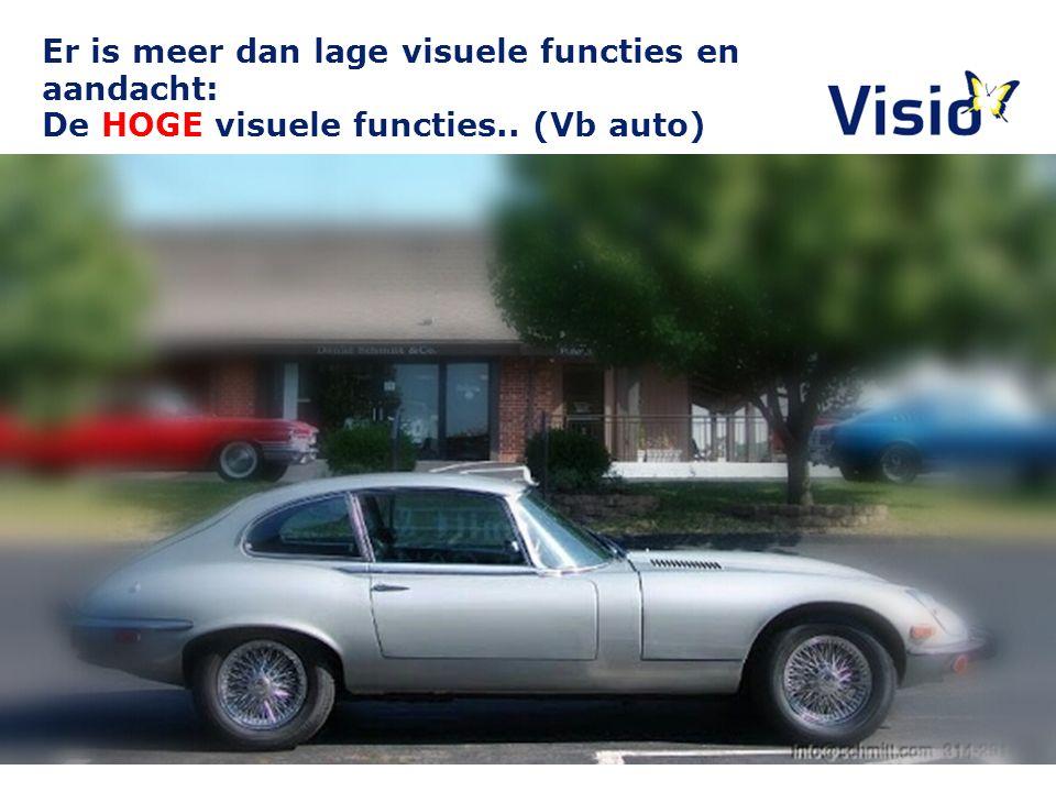 Er is meer dan lage visuele functies en aandacht: De HOGE visuele functies.. (Vb auto) 10 december 2015