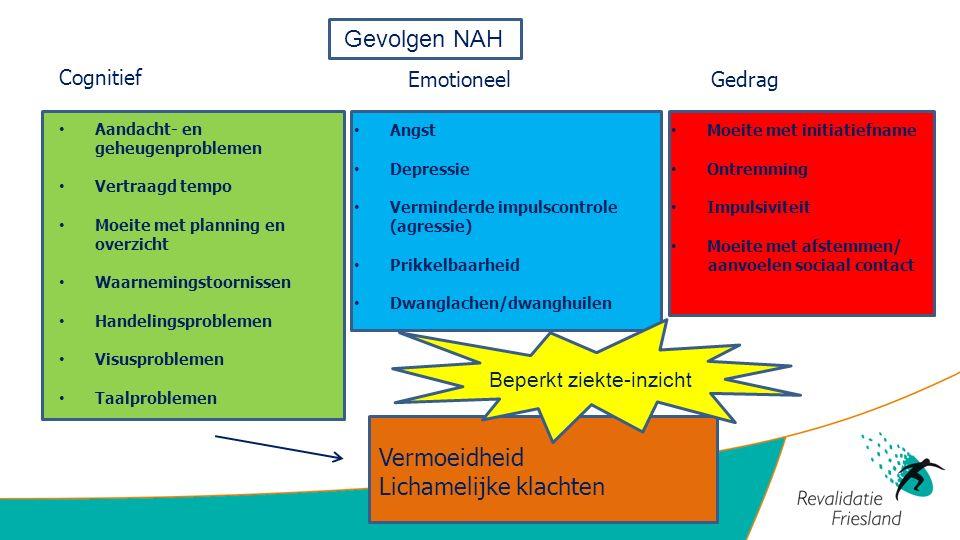 Figuur 2: Nederlandse vertaling van het 'ICF model', (WHO, 2002).