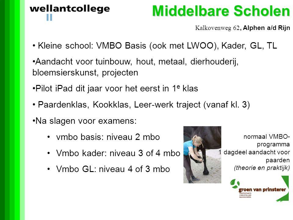 Middelbare Scholen Kalkovenweg 62, Alphen a/d Rijn Kleine school: VMBO Basis (ook met LWOO), Kader, GL, TL Aandacht voor tuinbouw, hout, metaal, dierhouderij, bloemsierskunst, projecten Pilot iPad dit jaar voor het eerst in 1 e klas Paardenklas, Kookklas, Leer-werk traject (vanaf kl.