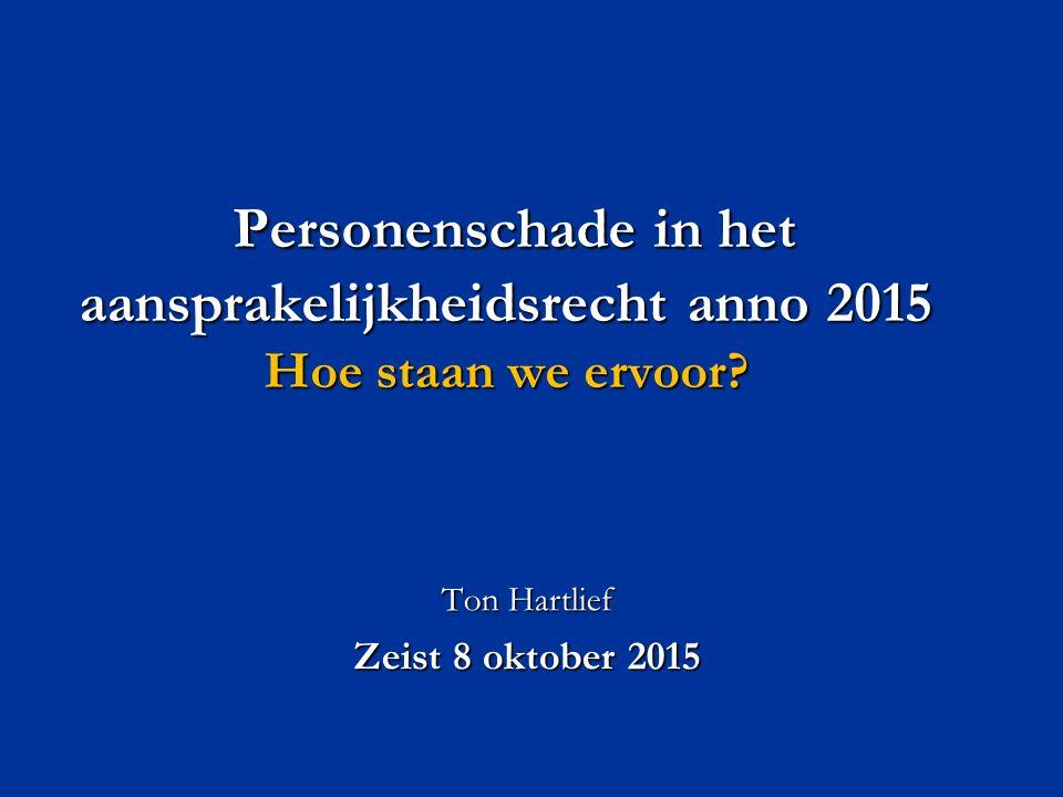 Personenschade in het aansprakelijkheidsrecht anno 2015 Hoe staan we ervoor.