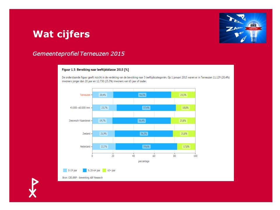 Wat cijfers terneuzen.incijfers.nl 2015 24
