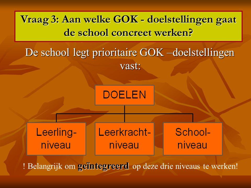 De school legt prioritaire GOK –doelstellingen vast: De school legt prioritaire GOK –doelstellingen vast: Vraag 3: Aan welke GOK - doelstellingen gaat de school concreet werken.