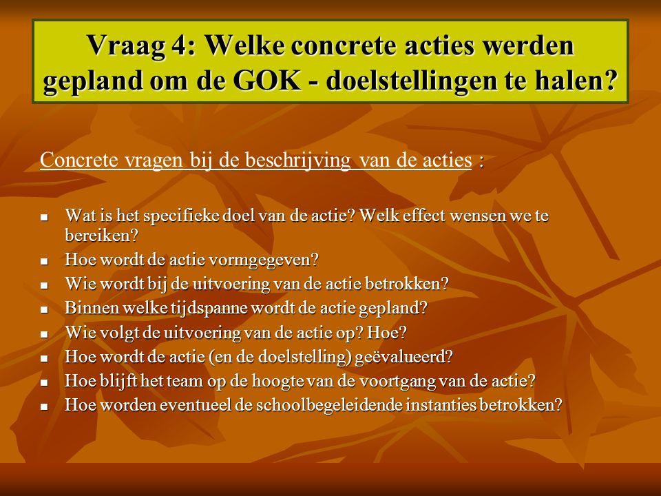 Vraag 4: Welke concrete acties werden gepland om de GOK - doelstellingen te halen? : Concrete vragen bij de beschrijving van de acties : Wat is het sp