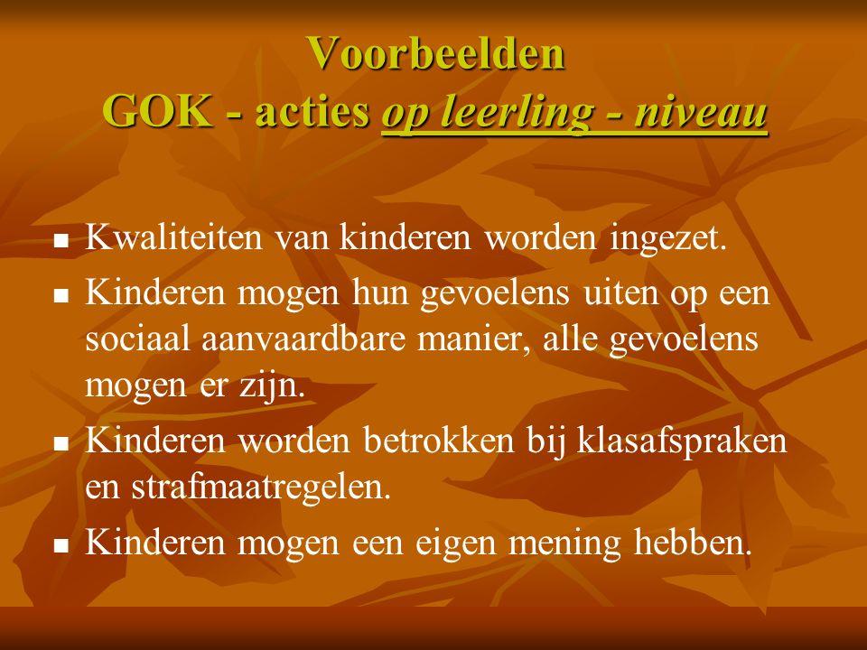 Voorbeelden GOK - acties op leerling - niveau Kwaliteiten van kinderen worden ingezet.