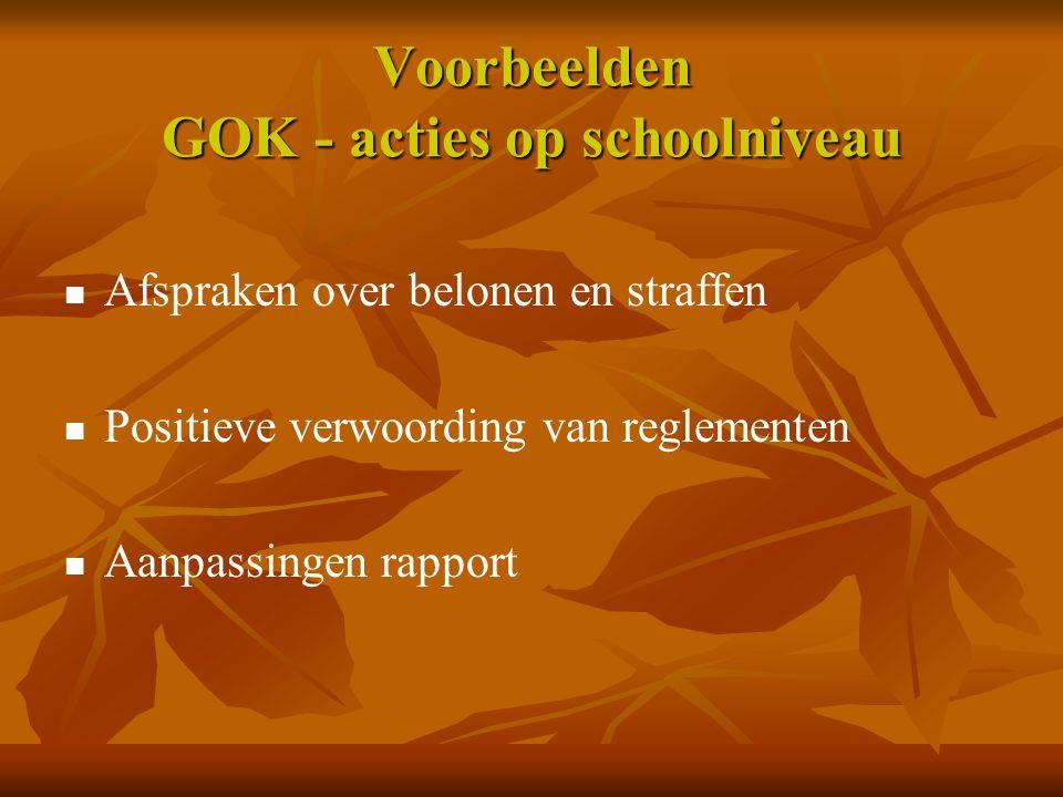 Voorbeelden GOK - acties op schoolniveau Afspraken over belonen en straffen Positieve verwoording van reglementen Aanpassingen rapport