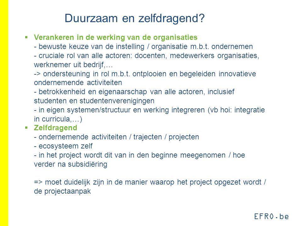 EFRO.be Duurzaam en zelfdragend?  Verankeren in de werking van de organisaties - bewuste keuze van de instelling / organisatie m.b.t. ondernemen - cr