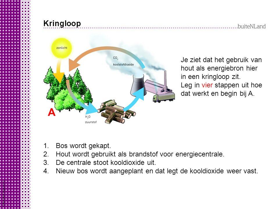 Kringloop A Je ziet dat het gebruik van hout als energiebron hier in een kringloop zit. Leg in vier stappen uit hoe dat werkt en begin bij A. 1. Bos w