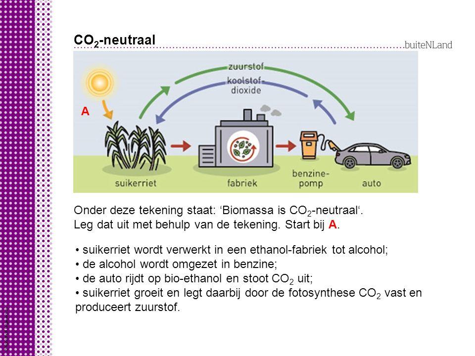 CO 2 -neutraal Onder deze tekening staat: 'Biomassa is CO 2 -neutraal'. Leg dat uit met behulp van de tekening. Start bij A. A suikerriet wordt verwer