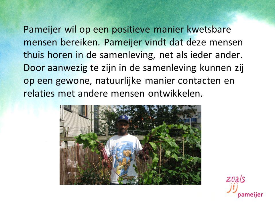 Pameijer wil op een positieve manier kwetsbare mensen bereiken. Pameijer vindt dat deze mensen thuis horen in de samenleving, net als ieder ander. Doo