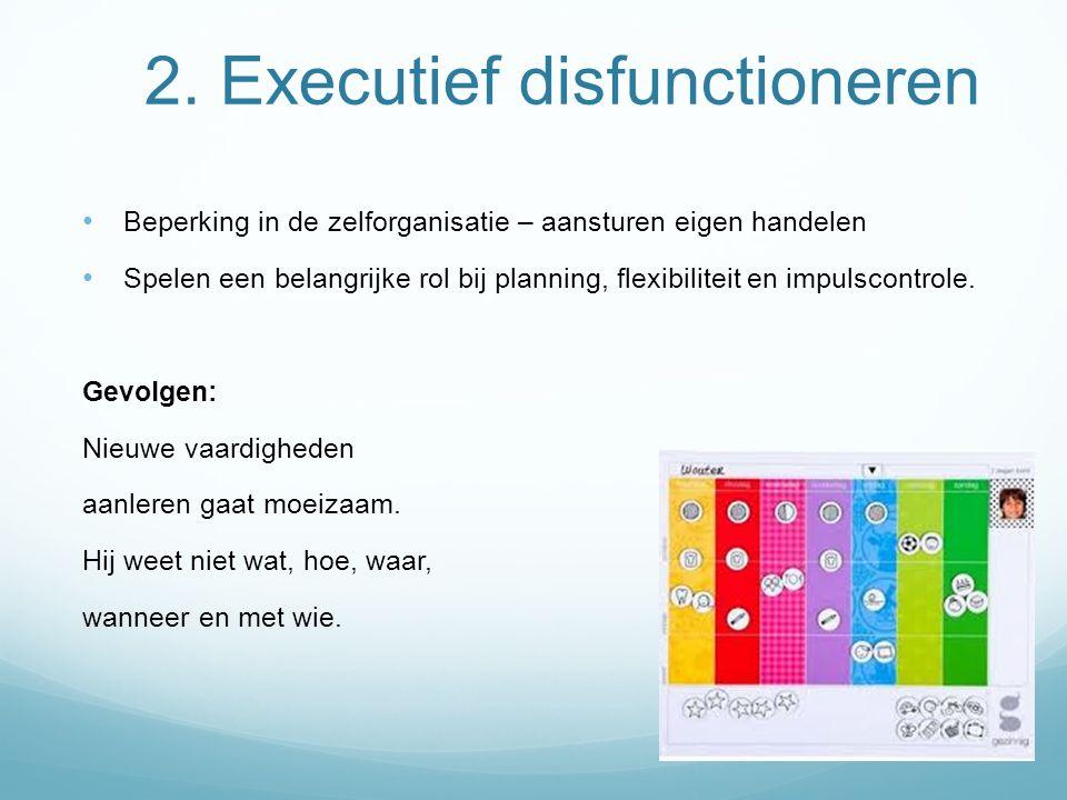 2. Executief disfunctioneren Beperking in de zelforganisatie – aansturen eigen handelen Spelen een belangrijke rol bij planning, flexibiliteit en impu