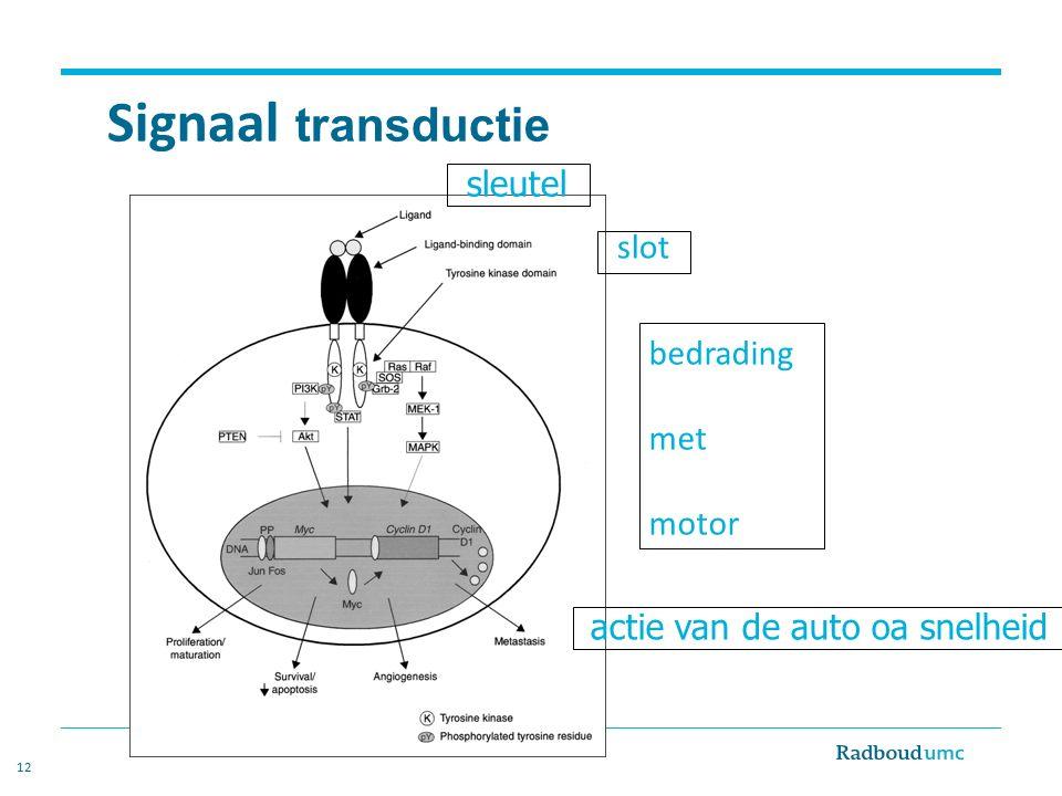 12 Signaal transductie sleutel bedrading met motor actie van de auto oa snelheid slot