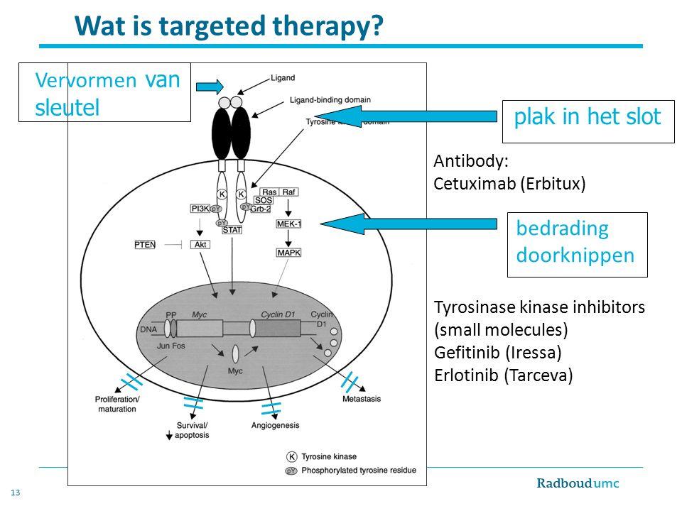 13 Wat is targeted therapy? Antibody: Cetuximab (Erbitux) Tyrosinase kinase inhibitors (small molecules) Gefitinib (Iressa) Erlotinib (Tarceva) plak i