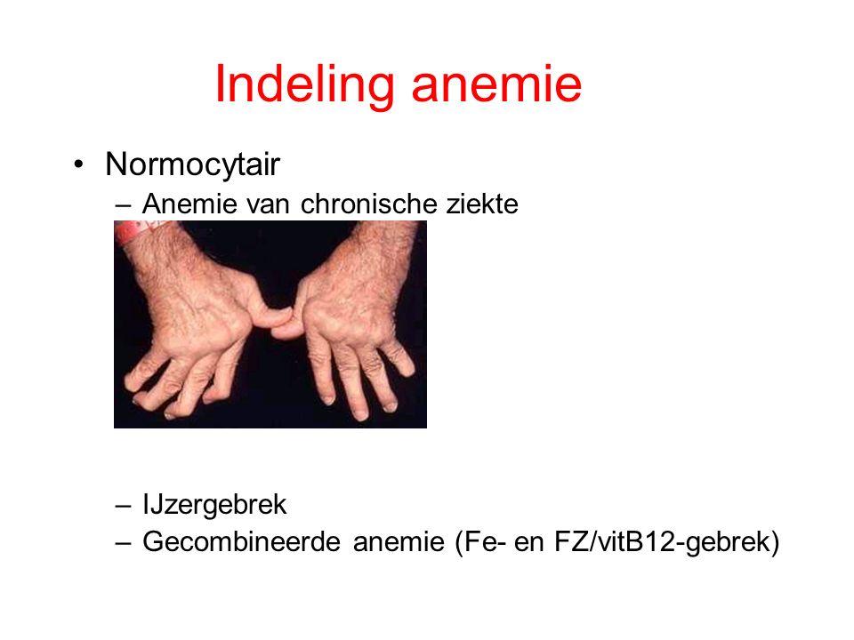 Indeling anemie Normocytair –Anemie van chronische ziekte –IJzergebrek –Gecombineerde anemie (Fe- en FZ/vitB12-gebrek)