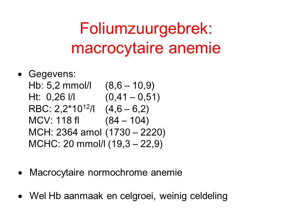 Foliumzuurgebrek: macrocytaire anemie  Gegevens: Hb: 5,2 mmol/l (8,6 – 10,9) Ht: 0,26 l/l(0,41 – 0,51) RBC: 2,2*10 12 /l(4,6 – 6,2) MCV: 118 fl(84 –
