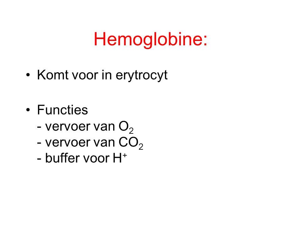 Hemoglobine: Komt voor in erytrocyt Functies - vervoer van O 2 - vervoer van CO 2 - buffer voor H +