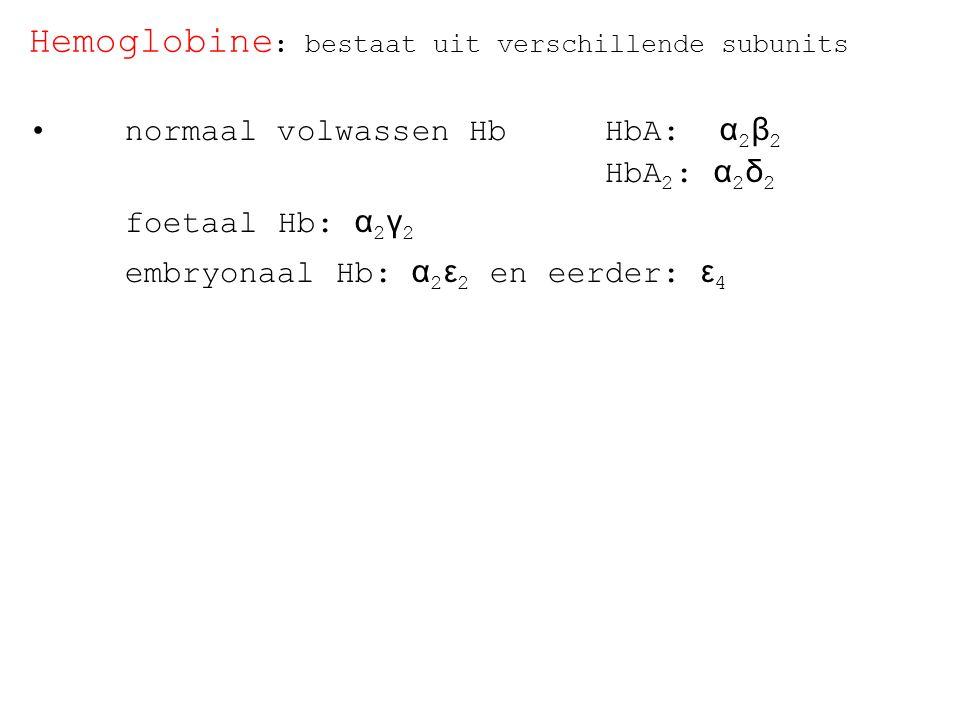 Hemoglobine : bestaat uit verschillende subunits normaal volwassen HbHbA: α 2 β 2 HbA 2 : α 2 δ 2 foetaal Hb: α 2 γ 2 embryonaal Hb: α 2 ε 2 en eerder