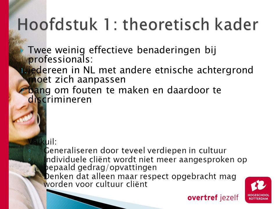  Twee weinig effectieve benaderingen bij professionals: 1. iedereen in NL met andere etnische achtergrond moet zich aanpassen 2. bang om fouten te ma