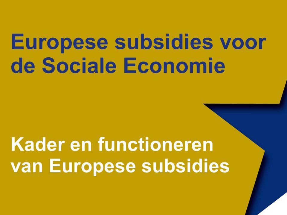 Europese subsidies voor de Sociale Economie Kader en functioneren van Europese subsidies