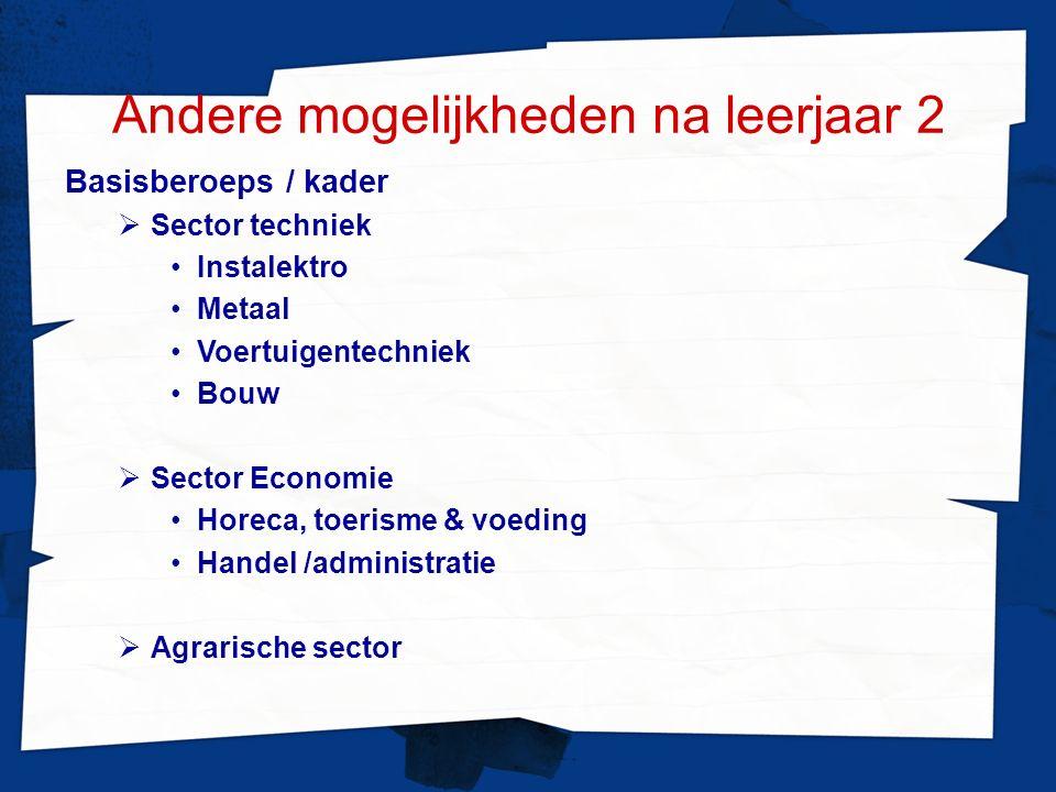 Andere mogelijkheden na leerjaar 2 Basisberoeps / kader  Sector techniek Instalektro Metaal Voertuigentechniek Bouw  Sector Economie Horeca, toerisme & voeding Handel /administratie  Agrarische sector
