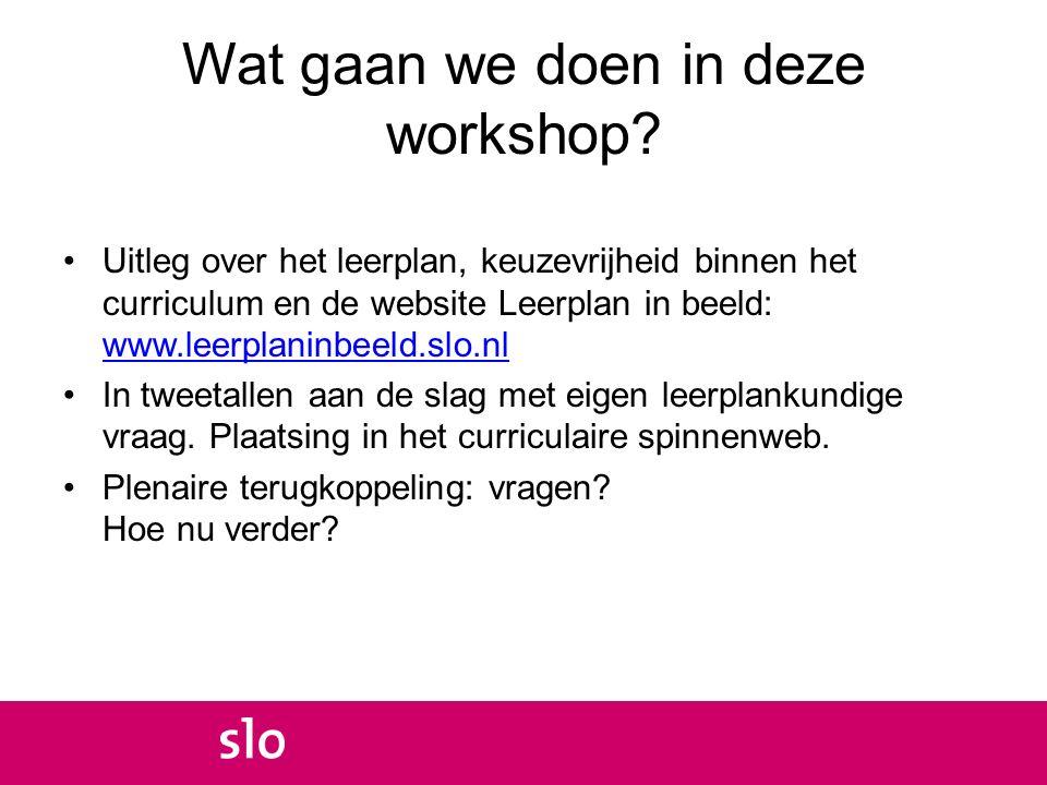Wat gaan we doen in deze workshop? Uitleg over het leerplan, keuzevrijheid binnen het curriculum en de website Leerplan in beeld: www.leerplaninbeeld.