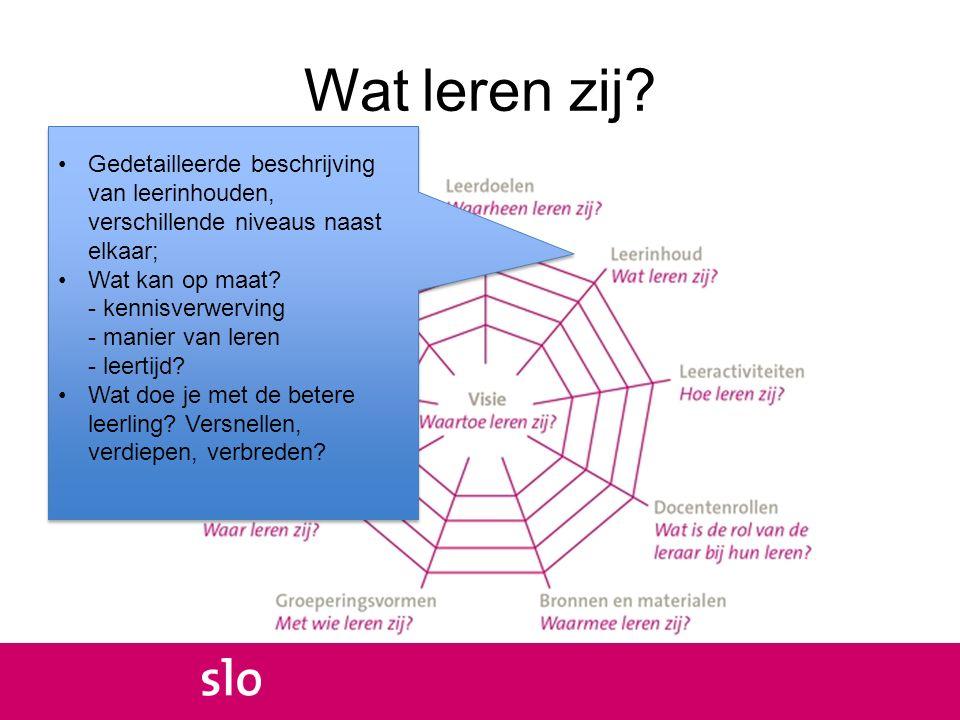 Wat leren zij? Gedetailleerde beschrijving van leerinhouden, verschillende niveaus naast elkaar; Wat kan op maat? - kennisverwerving - manier van lere