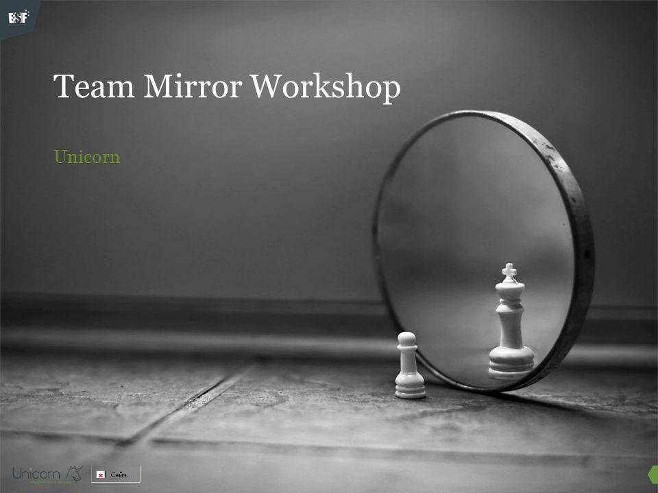 Team Mirror Workshop Unicorn