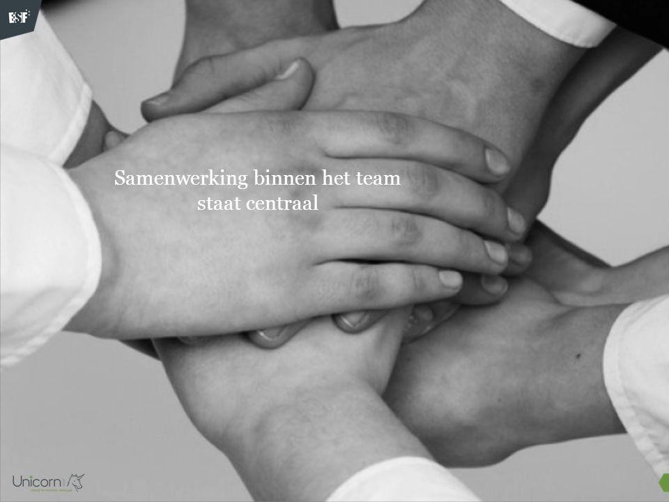 1.Het totale team verdeelt zich in subteam A en subteam B.