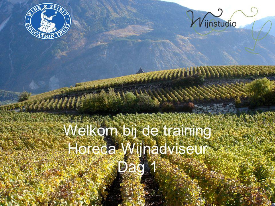 Welkom bij de training Horeca Wijnadviseur Dag 1