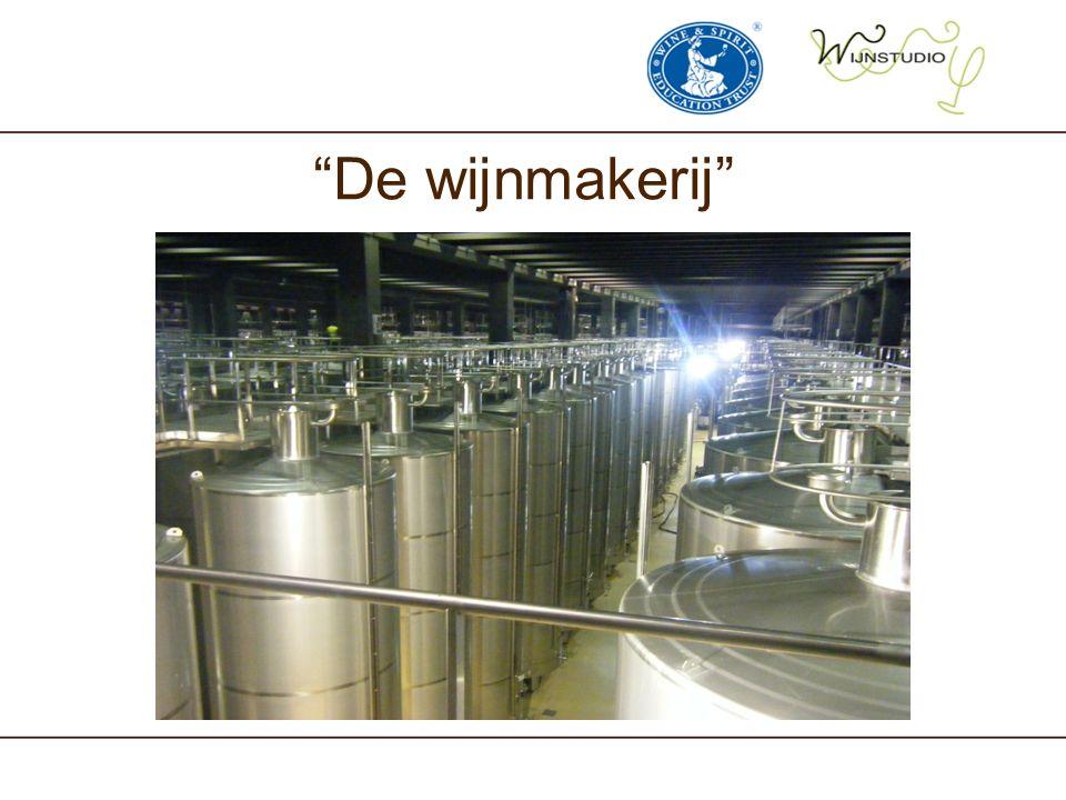 """""""De wijnmakerij"""""""