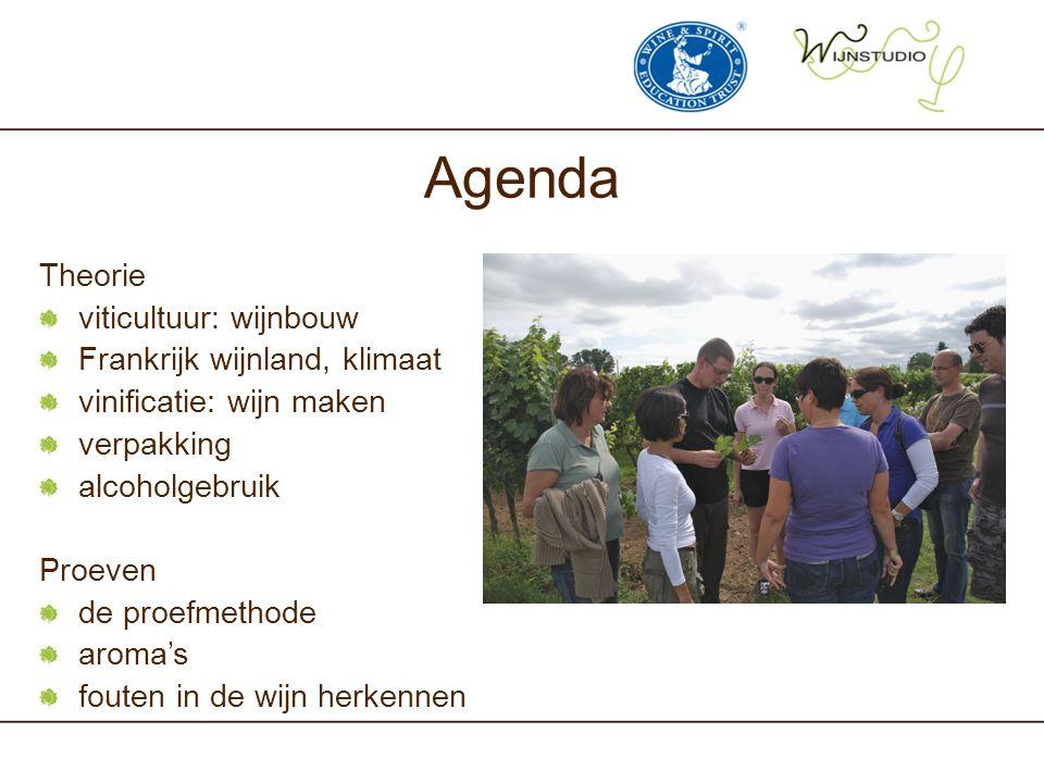 Agenda Theorie viticultuur: wijnbouw Frankrijk wijnland, klimaat vinificatie: wijn maken verpakking alcoholgebruik Proeven de proefmethode aroma's fou