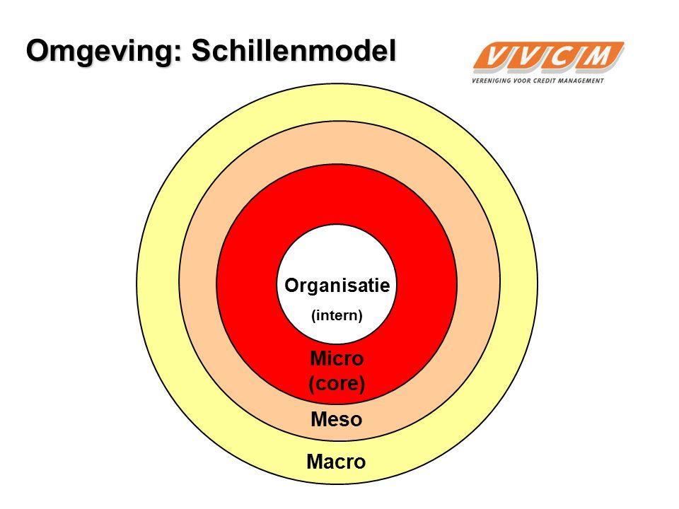 10 Organisatie Micro (core) Meso Macro Demografie Economie Linguïstisch e-business Sociaal Technologie Ecologie Politiek Markt DESTEMPEL