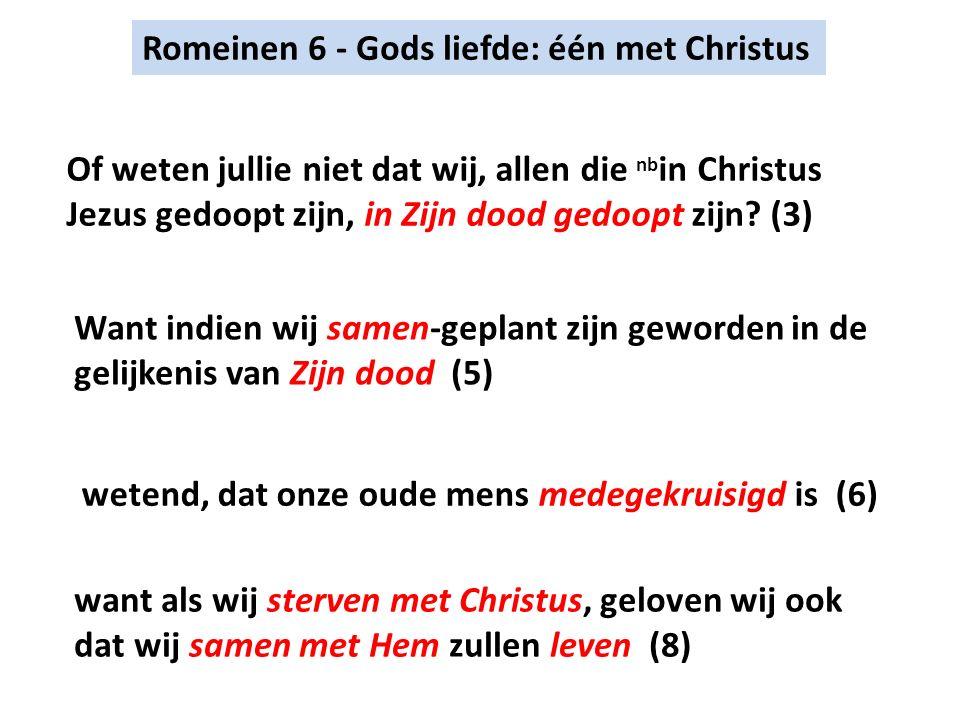 Romeinen 6 - Gods liefde: één met Christus Of weten jullie niet dat wij, allen die nb in Christus Jezus gedoopt zijn, in Zijn dood gedoopt zijn.