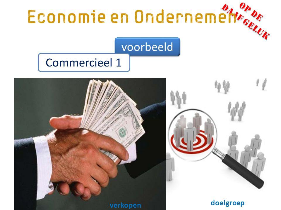 voorbeeld Commercieel 1 marketing doelgroep verkopen