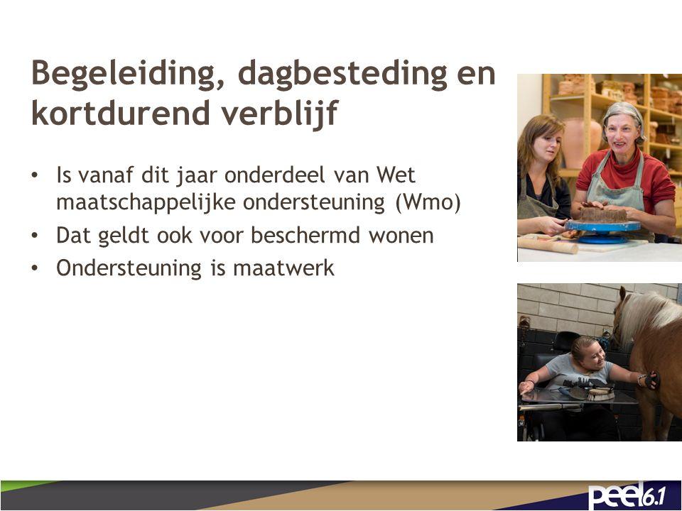 Begeleiding, dagbesteding en kortdurend verblijf Is vanaf dit jaar onderdeel van Wet maatschappelijke ondersteuning (Wmo) Dat geldt ook voor beschermd wonen Ondersteuning is maatwerk