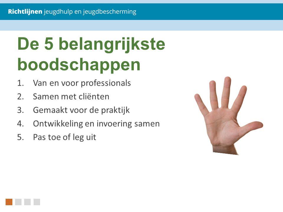 De 5 belangrijkste boodschappen 1.Van en voor professionals 2.Samen met cliënten 3.Gemaakt voor de praktijk 4.Ontwikkeling en invoering samen 5.Pas to
