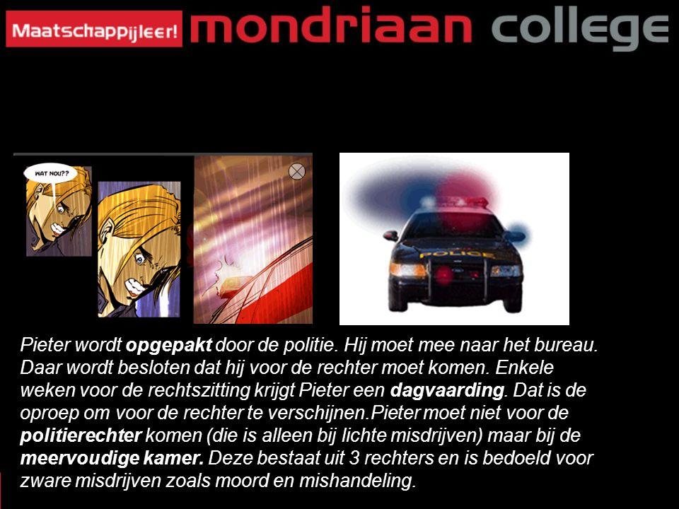 11 CRIMINALITEIT Pieter wordt opgepakt door de politie. Hij moet mee naar het bureau. Daar wordt besloten dat hij voor de rechter moet komen. Enkele w