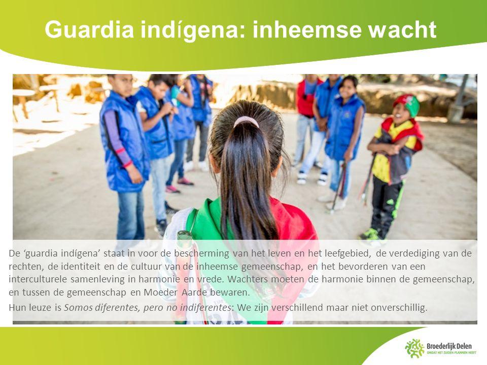 Guardia indígena: inheemse wacht De 'guardia indígena' staat in voor de bescherming van het leven en het leefgebied, de verdediging van de rechten, de