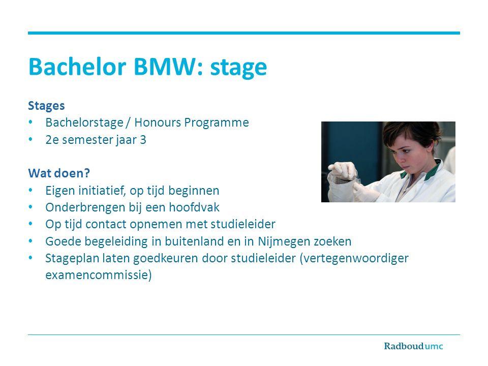 Bachelor BMW: stage Stages Bachelorstage / Honours Programme 2e semester jaar 3 Wat doen? Eigen initiatief, op tijd beginnen Onderbrengen bij een hoof
