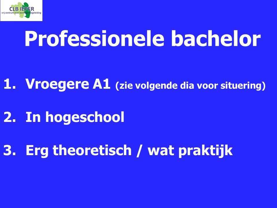Professionele bachelor 1.Vroegere A1 (zie volgende dia voor situering) 2.In hogeschool 3.Erg theoretisch / wat praktijk